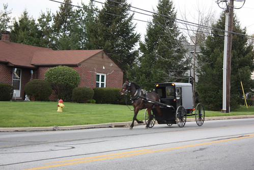 The Amish ride past the Olde Amish Inn