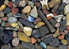 Missouri River stones, minerals, bones, gems... (Shitao  ) Tags: river photography rocks stones missouri minerals gems collecting missouririver boonville