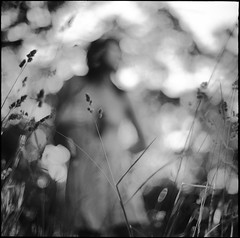 Spring Grass (vonSchnauzer) Tags: blackandwhite 120 6x6 film girl field mediumformat square evening bokeh vincent dream delta d76 50 ilford graflex norita focusbokeh vonschnauzer