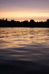 1June 28 347 (Emily / DreamEyce) Tags: sunset festival oregon salem willametteriver willamettevalley worldbeat june09