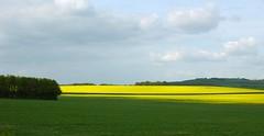 love english countryside...