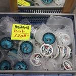IMG_8124 thumbnail