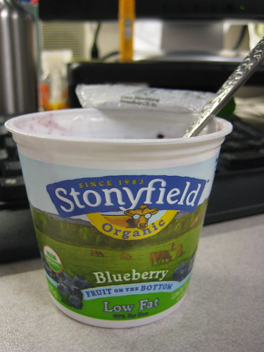 Stonyfield blueberry yogurt