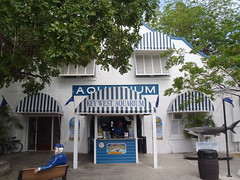 Front of aquarium