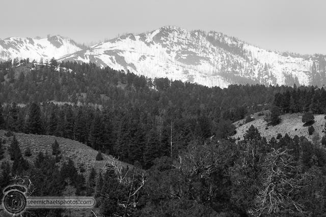 Yellowstone Day 1 52611 © Michael Klayman-029
