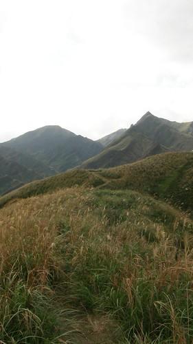 029.芒草與稜線