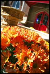(archangel) Tags: door flowers wedding red church fountain nc northcarolina courtyard mums decor greenville litwin mikelitwin archangel heatherbrad