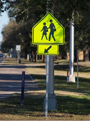 School Crossing Here