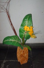 Srie Artes e Decorao - Arts and Decoration (jemaambiental) Tags: decoration fuxico collors collores muitascores pinturaemparede deocorao tagssrieartesedecoraoartsanddecoration arranjosfloraisfloresartificiais