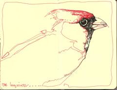 l o n g winter (Jennifer Kraska) Tags: bird moleskine sketch jennifer kraska