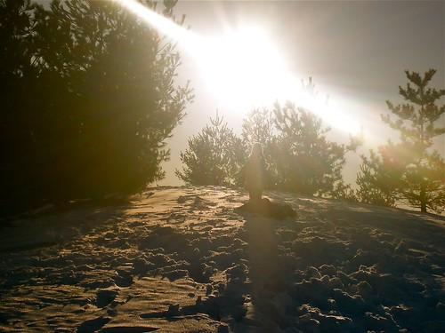 Sunny, Snowy Hill
