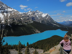 Viewing Peyto Lake (Phil's Pixels) Tags: mountains lakes explore alberta peyto icefieldparkway 10faves concordians