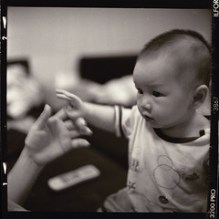 (S.H.CHOW) Tags: blackandwhite bw 6x6 rolleiflex mediumformat square photography naturallight hc110 s 120film h chow and delta3200 ilford iso1600 planar 1120 285 rolleinar selfdevelopment dilutionh 85mins bathroomdevelopment formatnatural zeissplanar28f film285c6x685minsbwbathroom developmentblack whitedelta3200dilution hilfordrolleiflexselfdevelopmentzeiss 28fbwhc110iso1600medium lightsquare