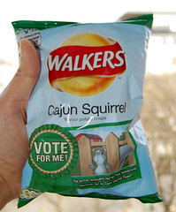 Squirrel flavour Crisps