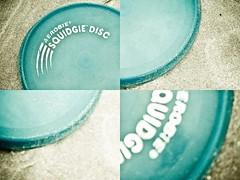 Worlds best frisbee