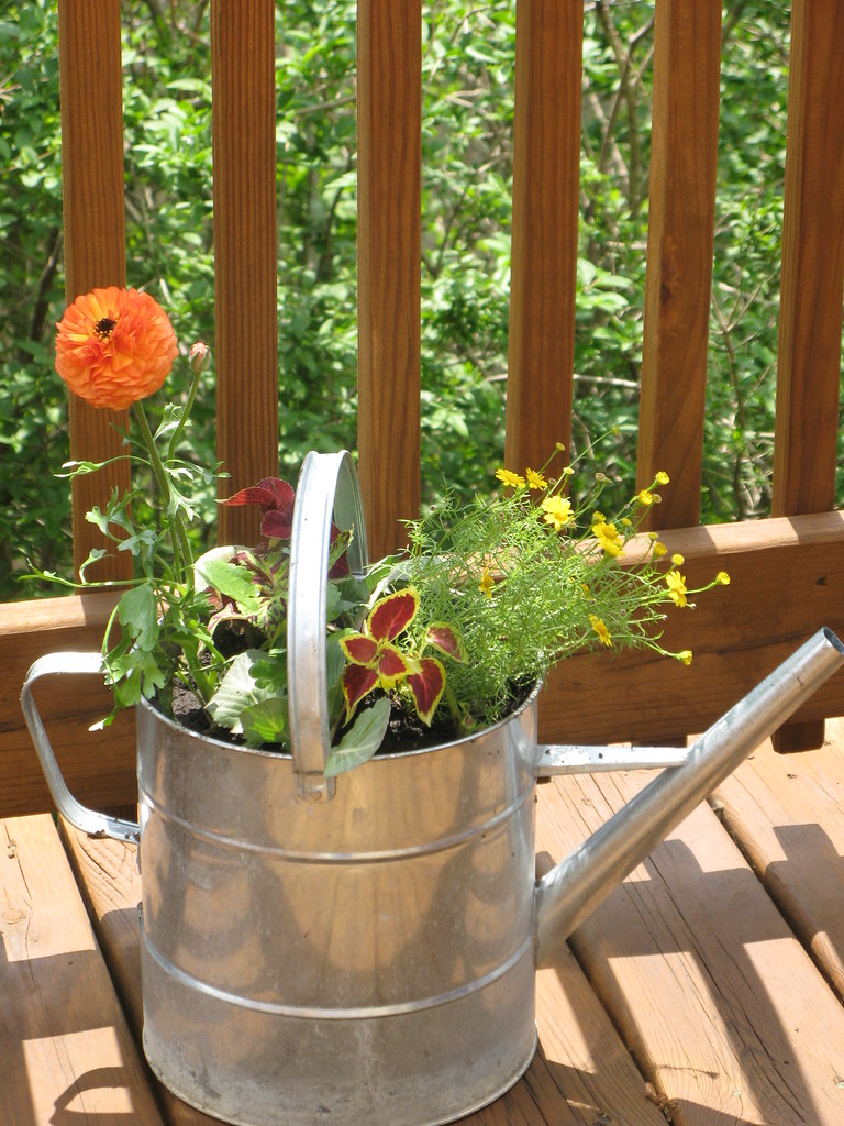 My watering can arrangement.