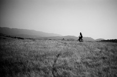 Miles to go (fivefortyfive) Tags: california county white black film grass bike vintage minolta kodak tmax hills tall 100 whoop x370 fivefortyfive andmilestogo beforeiactuallygetagoodnightssleeplikearealhumanbeing thisfilmwasleftoverfrommybrothersoldschoolphotographyclasshetookinsixthgrade itgotcancelledbecauseofthecostandpollutionofthechemicals inevergottotakeit weusedtohaveanactualdarkroomatmyschool theredlightsstillthereandeverything nowitsusedforcomputerstorage metaphoricalisntit maggieannre