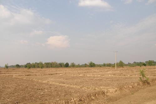 135.乾枯的田地