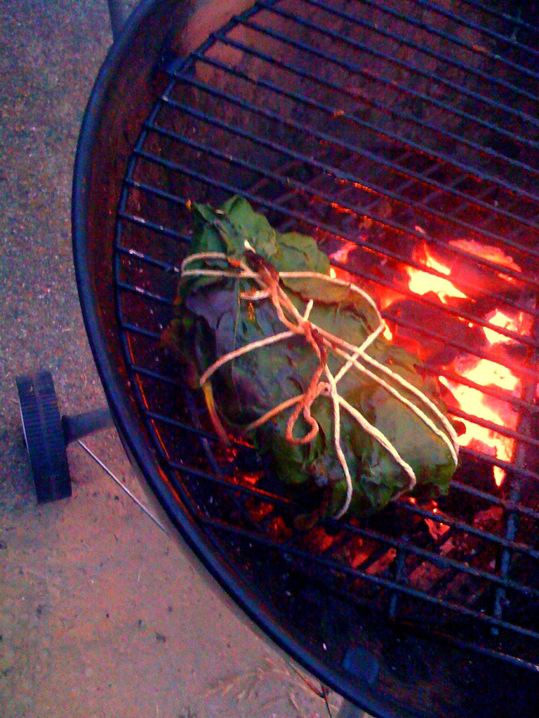 Tuna Wrapped in Fig Leaves, on the Grill