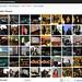 WP Flickr Manager - Zugriff auf Pubilc Photos