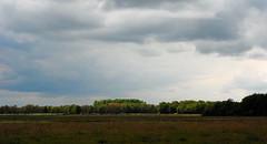 een streepje zon ! (vanderlaan.fotografeert) Tags: trees field clouds landscape bomen wolken nl veld landschap zuidlaren 50mmf18dafnikkor provinciedrenthe eenkleincropje sluitertijdfotografie