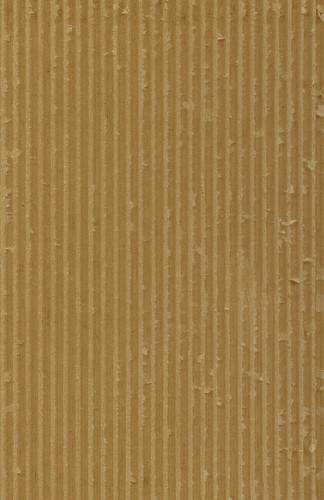 cardboard lite 2
