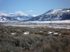 Lamar River Valley