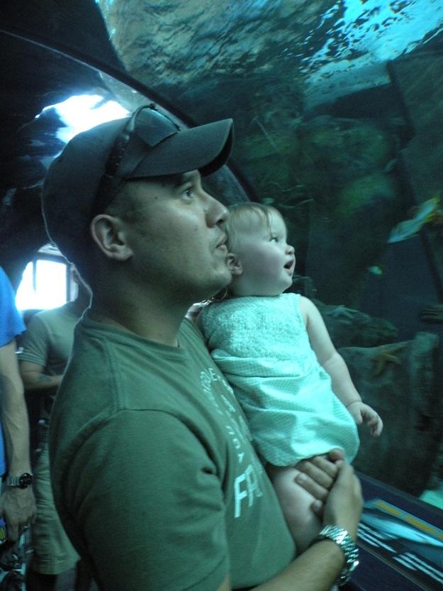 Myrtle Beach Ripley's Aquarium #10