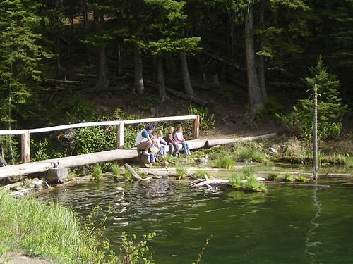 Bridge on trail at Trout Lake