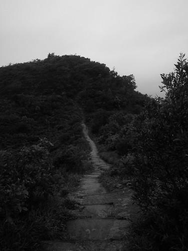 20110524 Post-Work Trail/Road Run