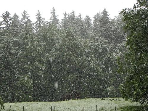 IL neige 1er juin 2011