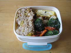 my lunch 1/13/09