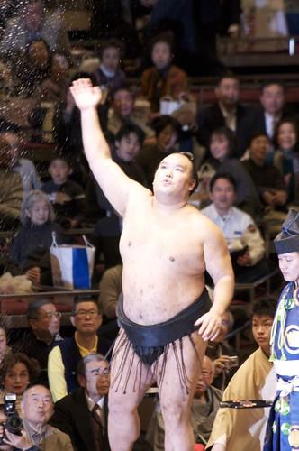 Sumo - Kitazakura