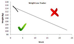 weight loss tracker week 2