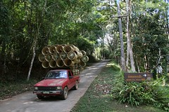Chiangmai (Poakpong) Tags: canon thailand 350d chiangmai pai canoneos350d maehongson