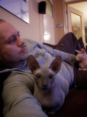 38/365 || Lazy Daying (dracorubio) Tags: portrait cats selfportrait me self personal willow pixel 365 sphynx sphynxcat 365days nudecat nakedcat 365portrait