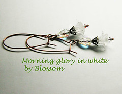 morningglory-white
