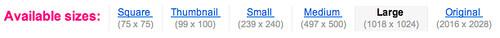 Captura de pantalla de Flickr mostrando el selector de tamaños