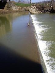 Misc2009 104 (rgblackwell) Tags: missouri coveredbridge burfordville bollingermill