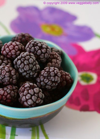 Blackberry Frozen Yogurt with Lychees