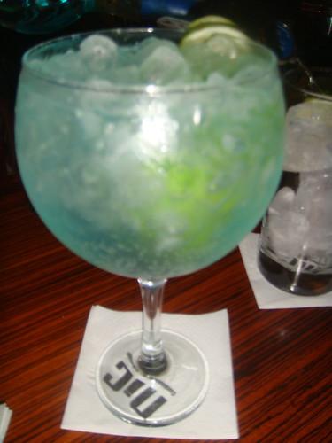 Gin Tonic de Magelan Gin