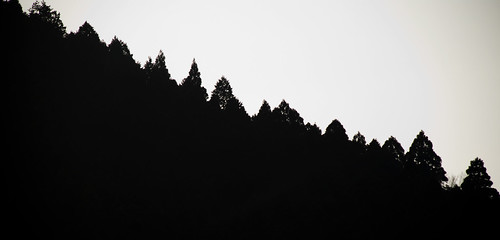 Hakone 08
