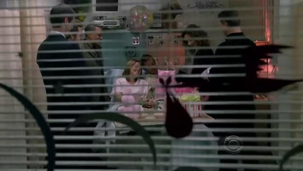 C.S.I.: N.Y. 5x23 犯罪現場紐約市第五季第二十三集