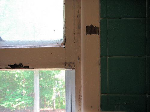 Simple joy: shower with an open window