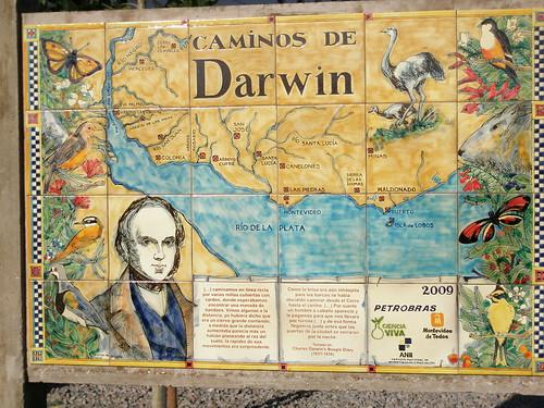 Placa, Caminos de Darwin, Montevideo