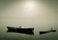 punts on lake phewa / phewa tal (funkyb) Tags: nepal mountain lake bird boat paddle sunk pokhara fewa outofseason phewatal