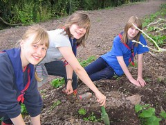 1st Quorn Guides taking part in our program of wild flower planting