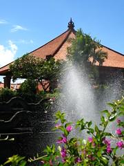 Ayodya Bali