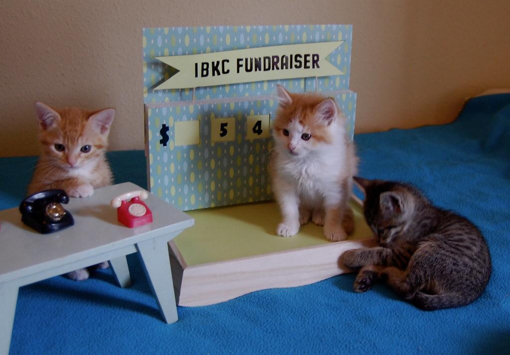 IBKC Fundraiser
