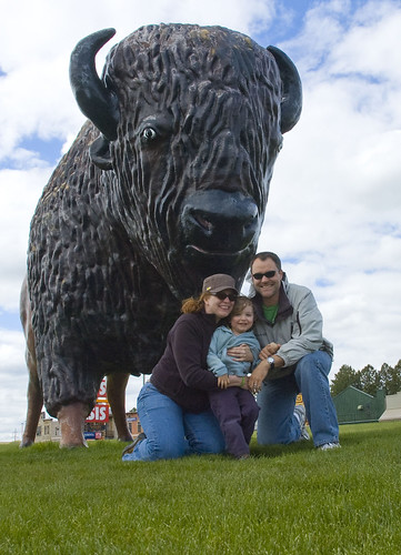 family and buffalo